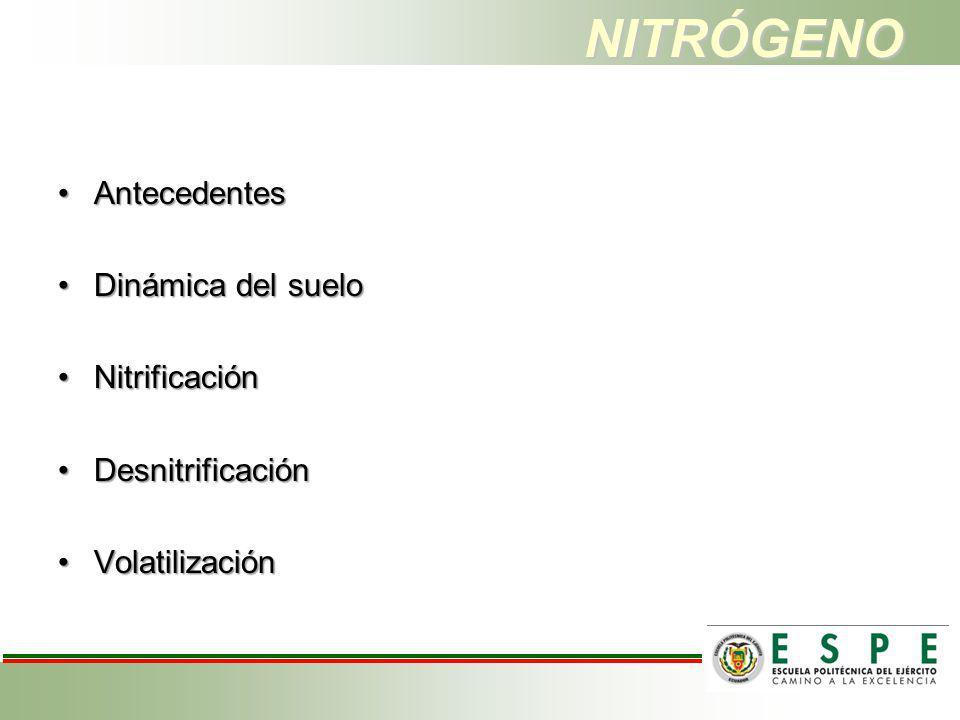 NITRÓGENO Antecedentes Dinámica del suelo Nitrificación