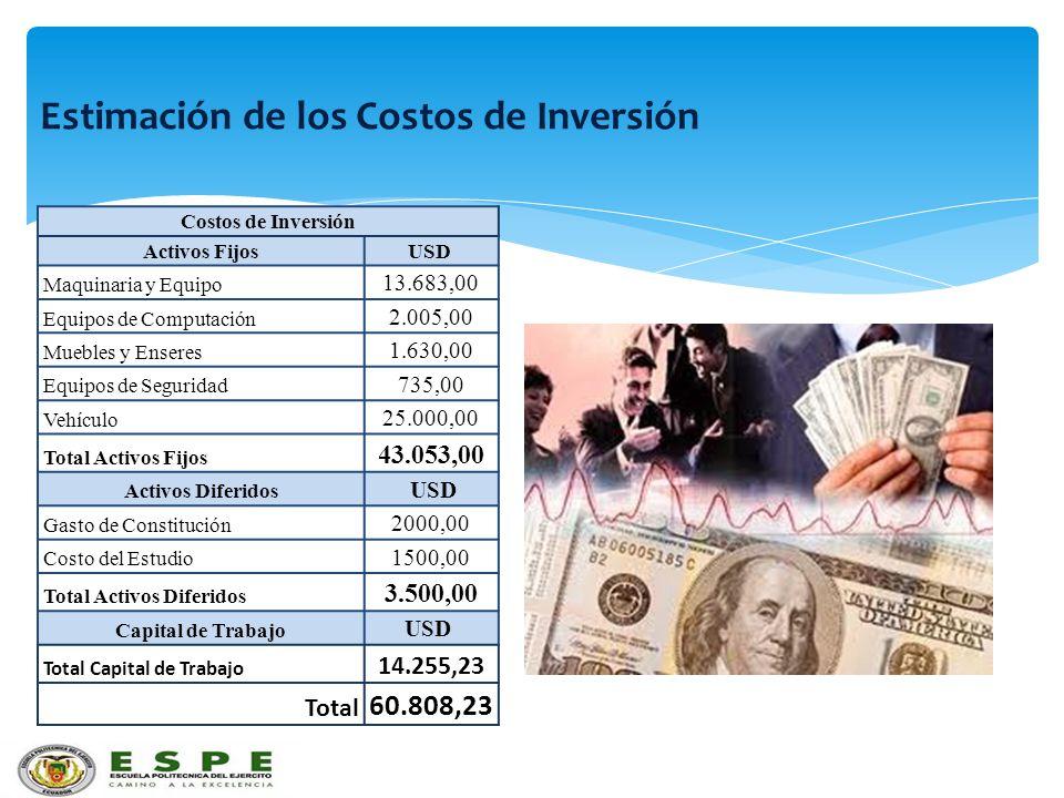 Estimación de los Costos de Inversión