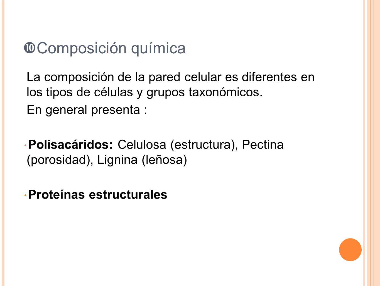 Composición química La composición de la pared celular es diferentes en los tipos de células y grupos taxonómicos.