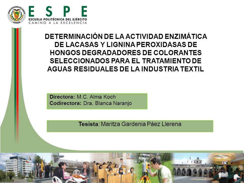 Tesista: Maritza Gardenia Páez Llerena