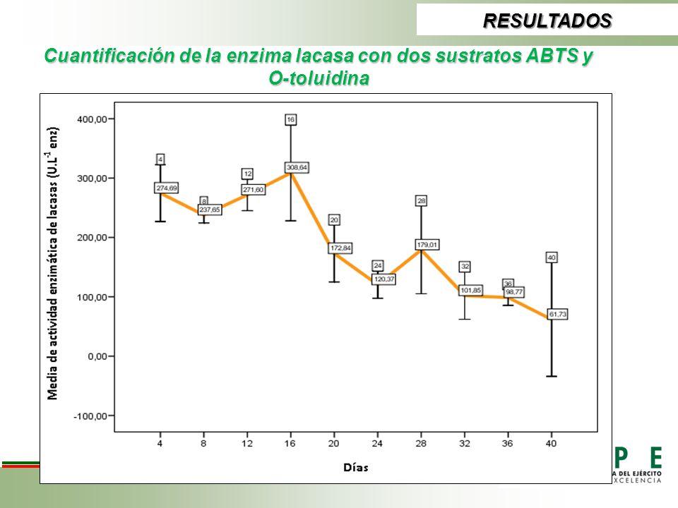 RESULTADOS Cuantificación de la enzima lacasa con dos sustratos ABTS y O-toluidina