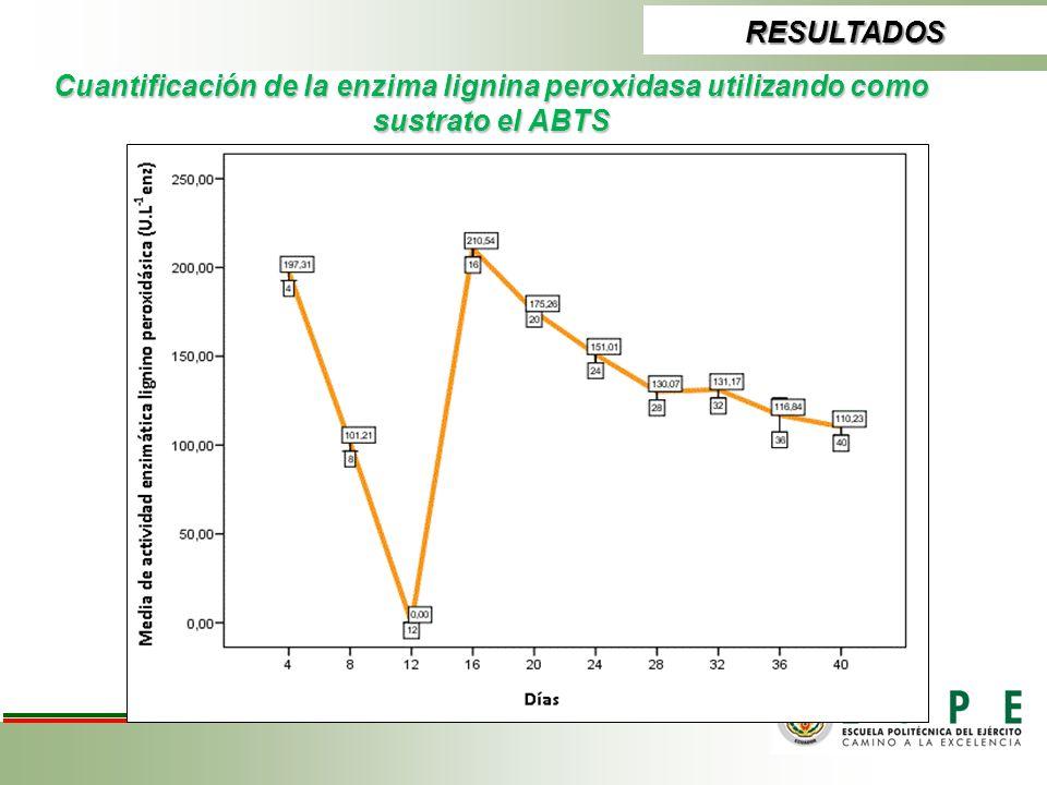 RESULTADOS Cuantificación de la enzima lignina peroxidasa utilizando como sustrato el ABTS