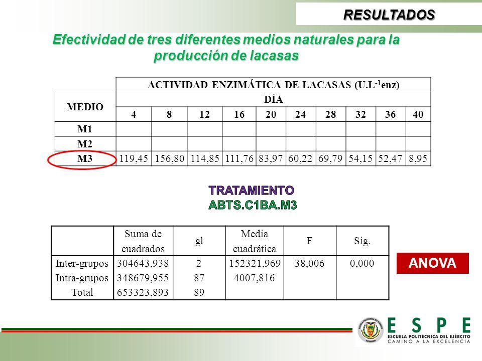 ACTIVIDAD ENZIMÁTICA DE LACASAS (U.L-1enz)
