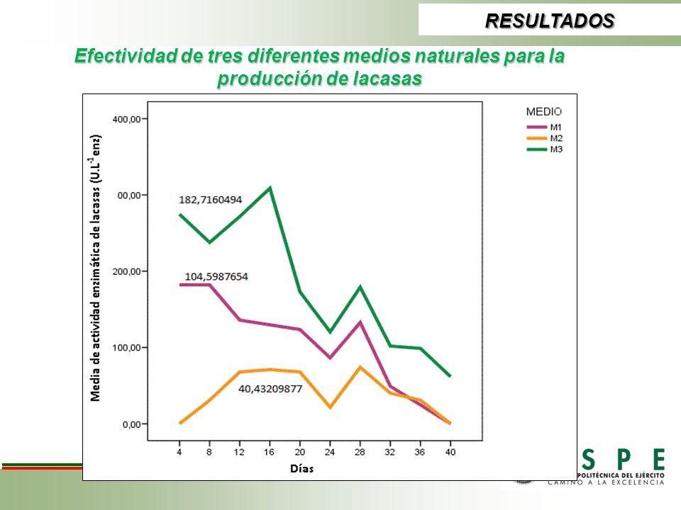 RESULTADOS Efectividad de tres diferentes medios naturales para la producción de lacasas