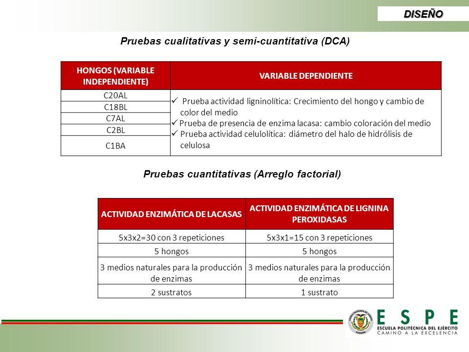 Pruebas cualitativas y semi-cuantitativa (DCA)