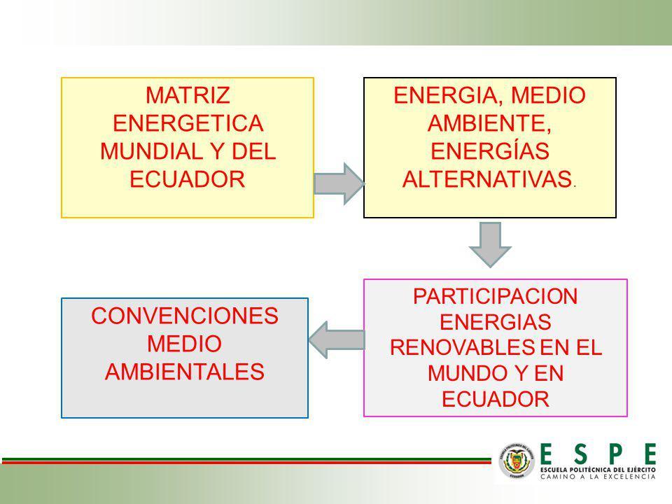 MATRIZ ENERGETICA MUNDIAL Y DEL ECUADOR