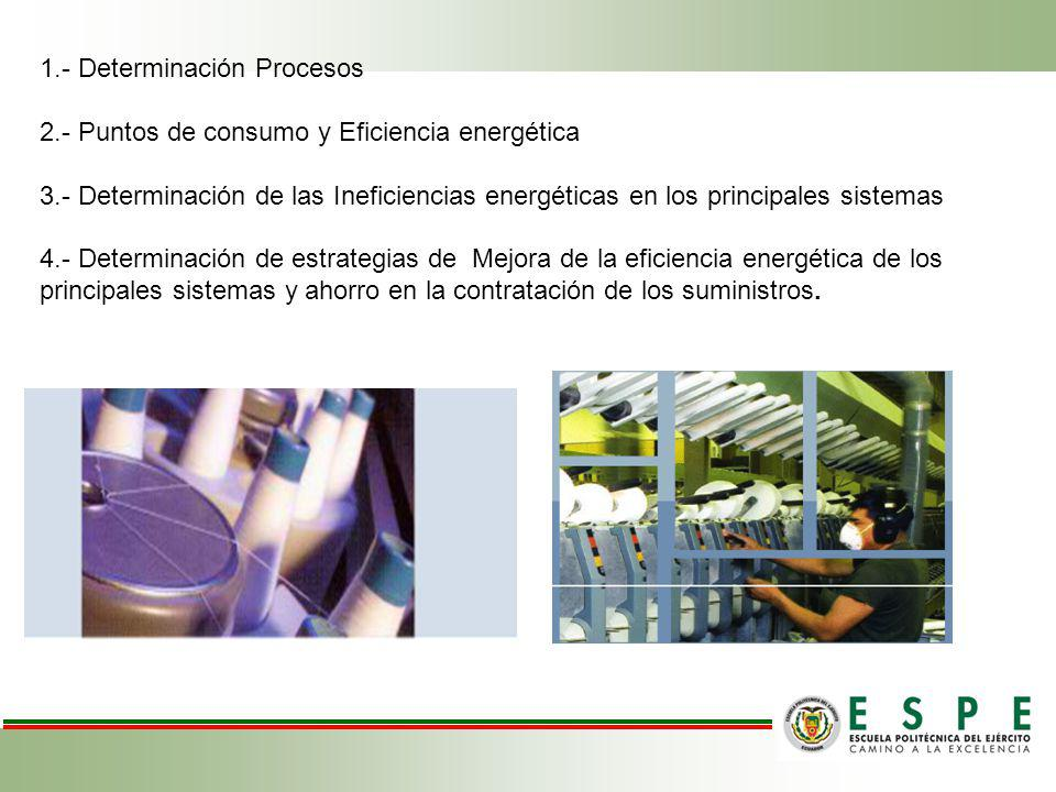 1.- Determinación Procesos