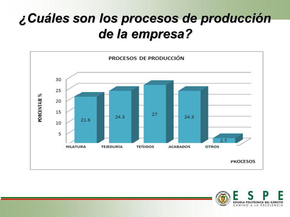 ¿Cuáles son los procesos de producción de la empresa