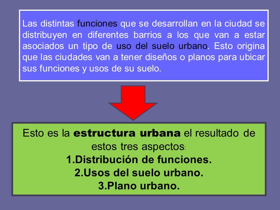 Distribución de funciones.