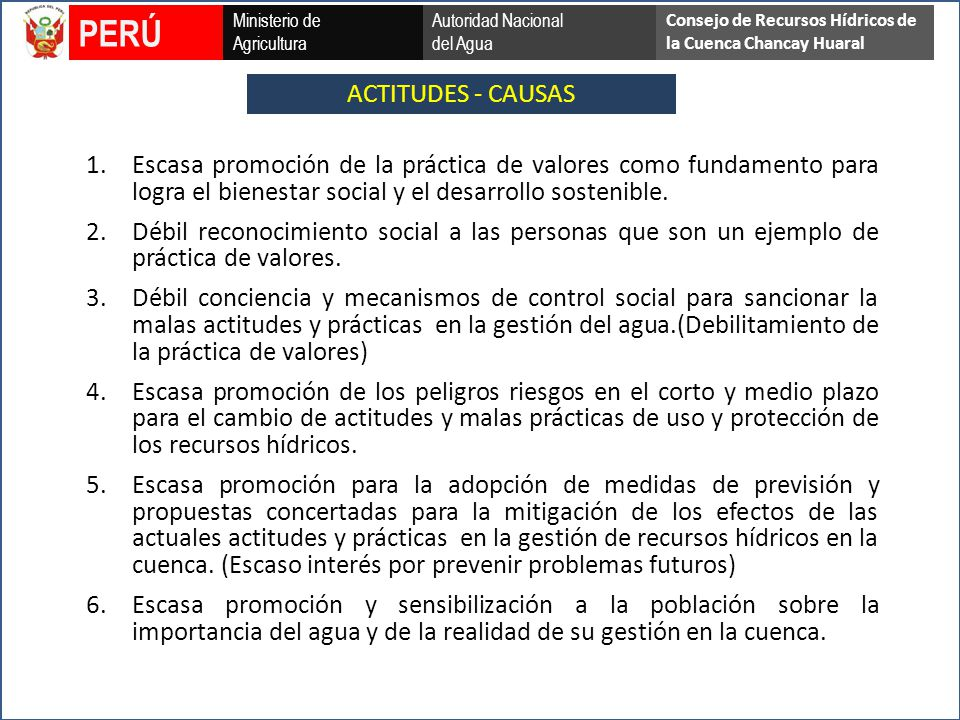 PERÚ ACTITUDES - CAUSAS