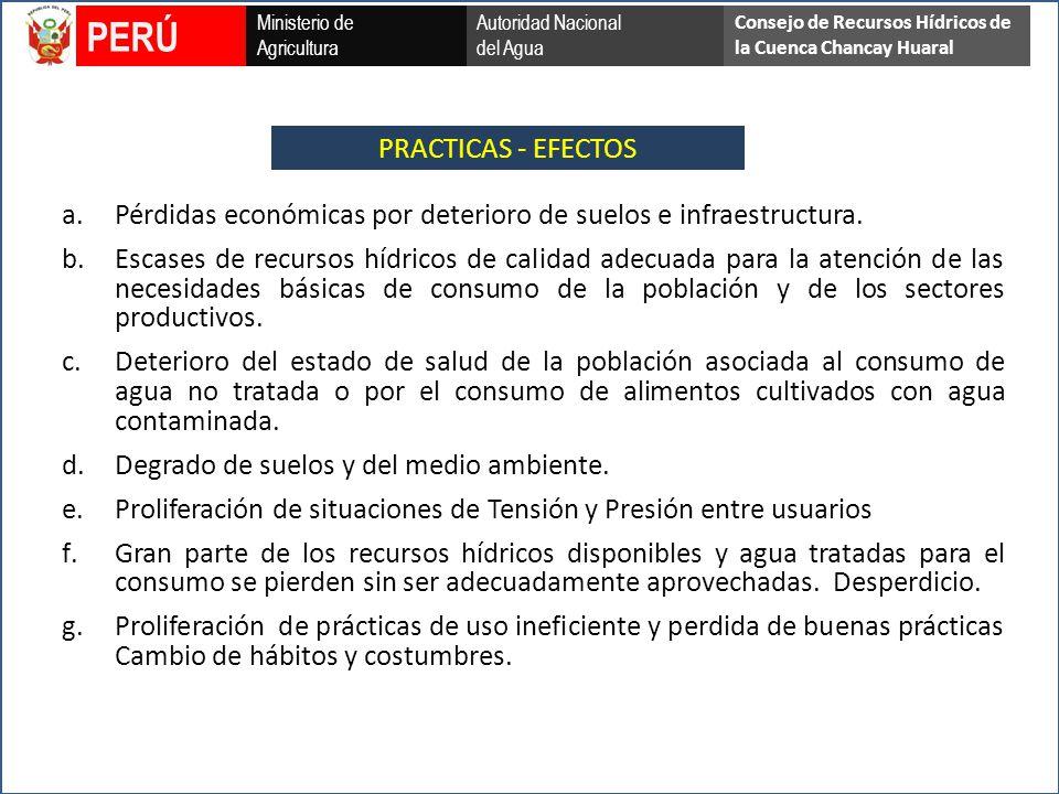PERÚ PRACTICAS - EFECTOS