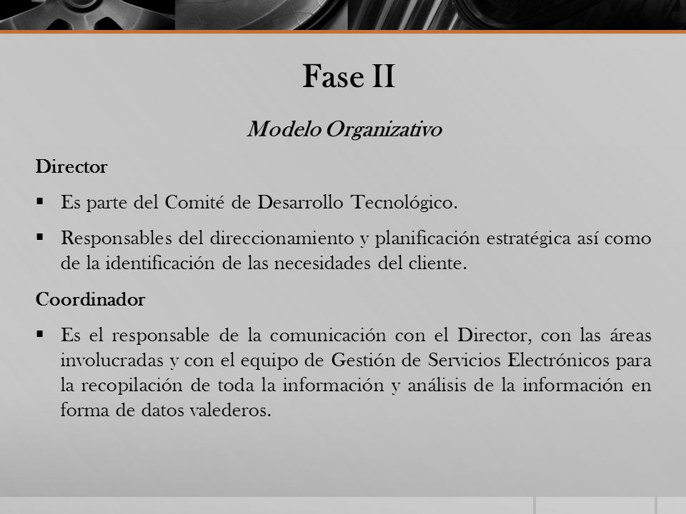 Fase II Modelo Organizativo Director