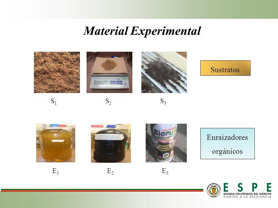 Material Experimental