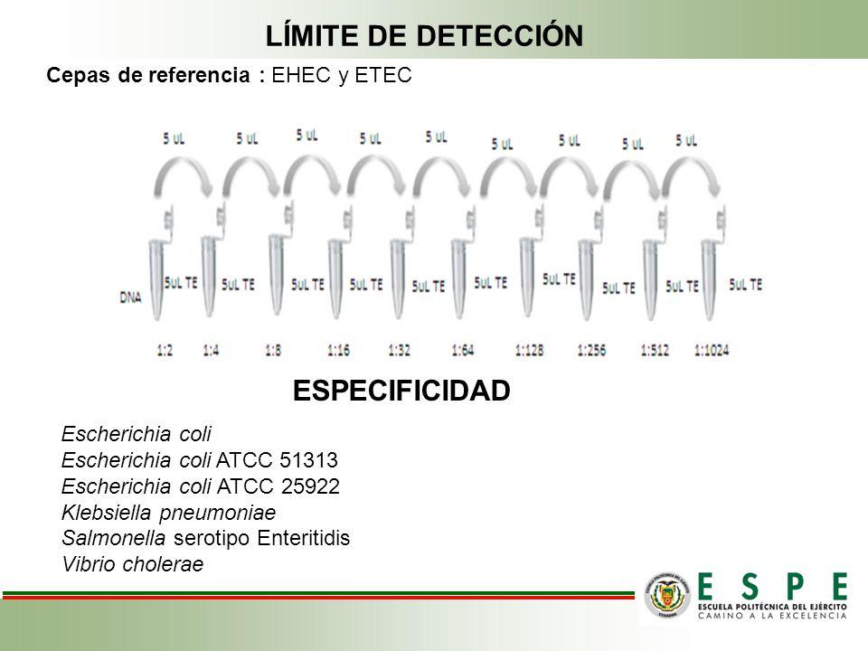 LÍMITE DE DETECCIÓN ESPECIFICIDAD Cepas de referencia : EHEC y ETEC