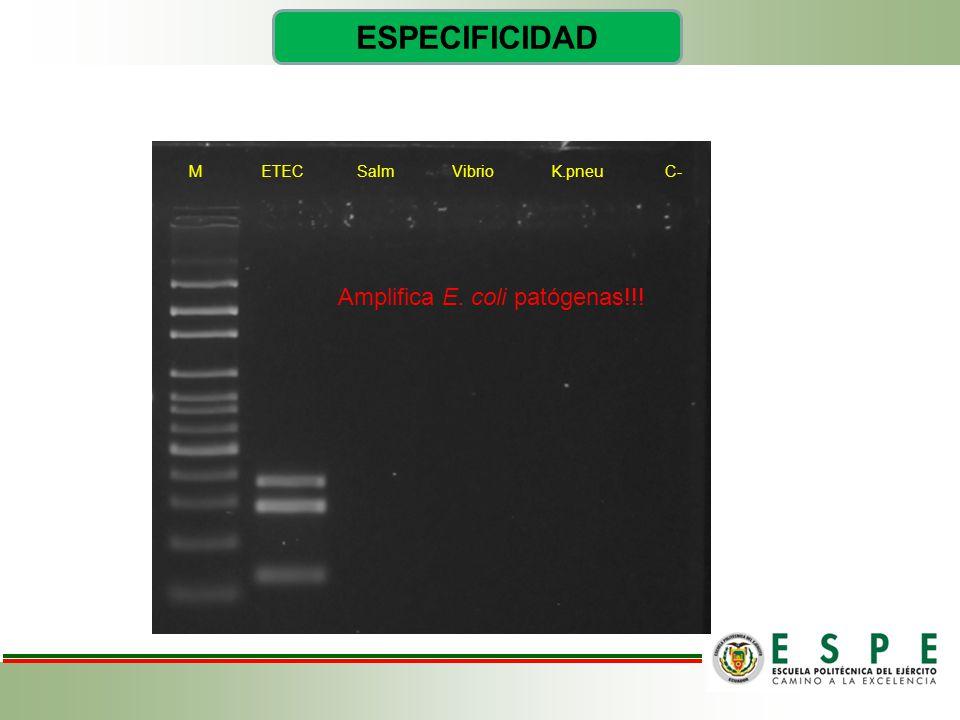 ESPECIFICIDAD Amplifica E. coli patógenas!!!