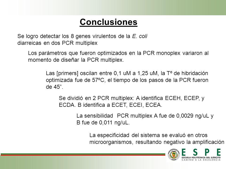 Conclusiones Se logro detectar los 8 genes virulentos de la E. coli diarreicas en dos PCR multiplex.
