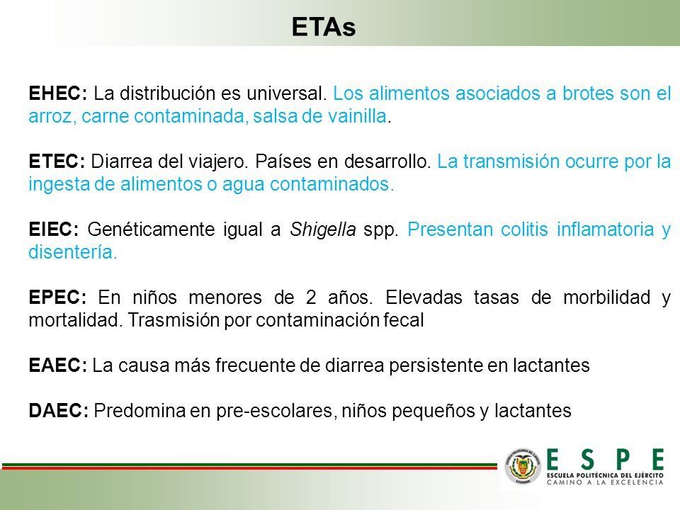 ETAs EHEC: La distribución es universal. Los alimentos asociados a brotes son el arroz, carne contaminada, salsa de vainilla.