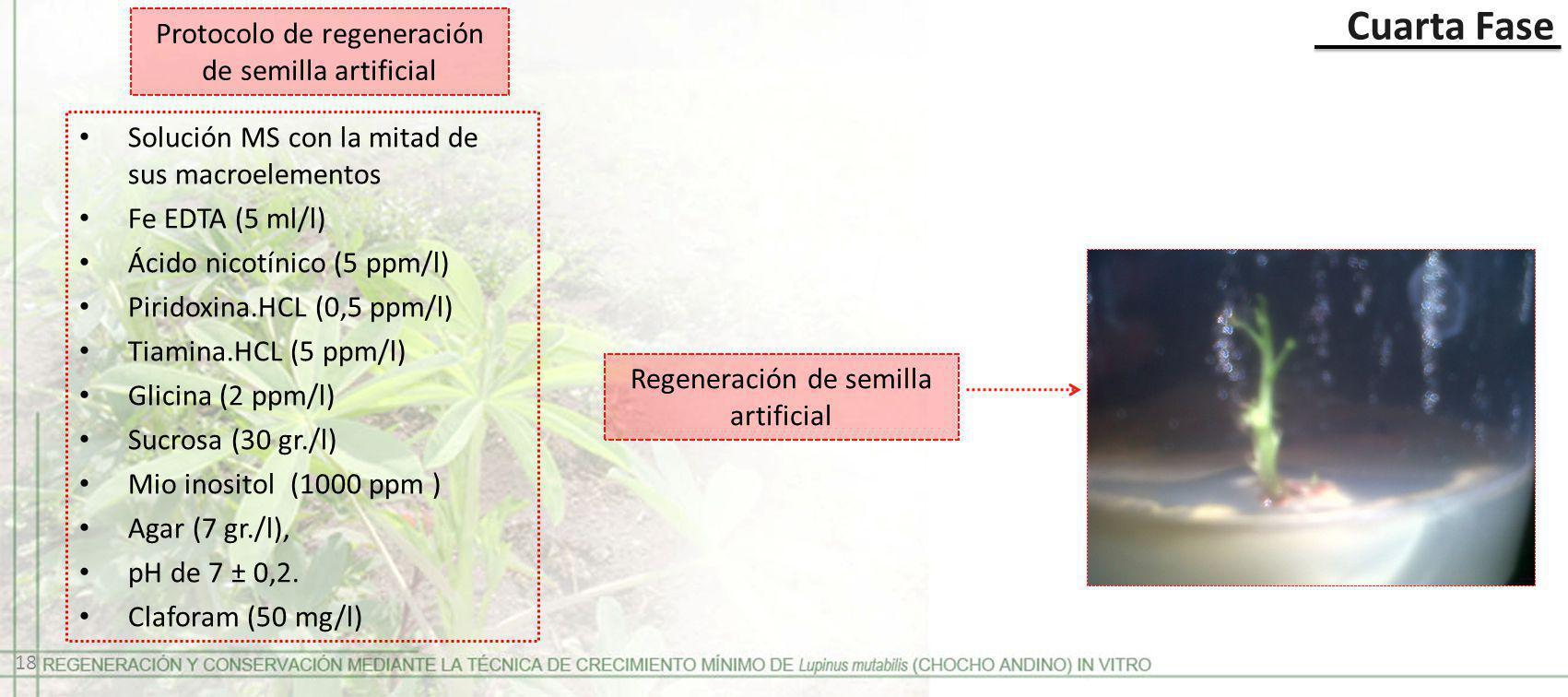 Protocolo de regeneración de semilla artificial