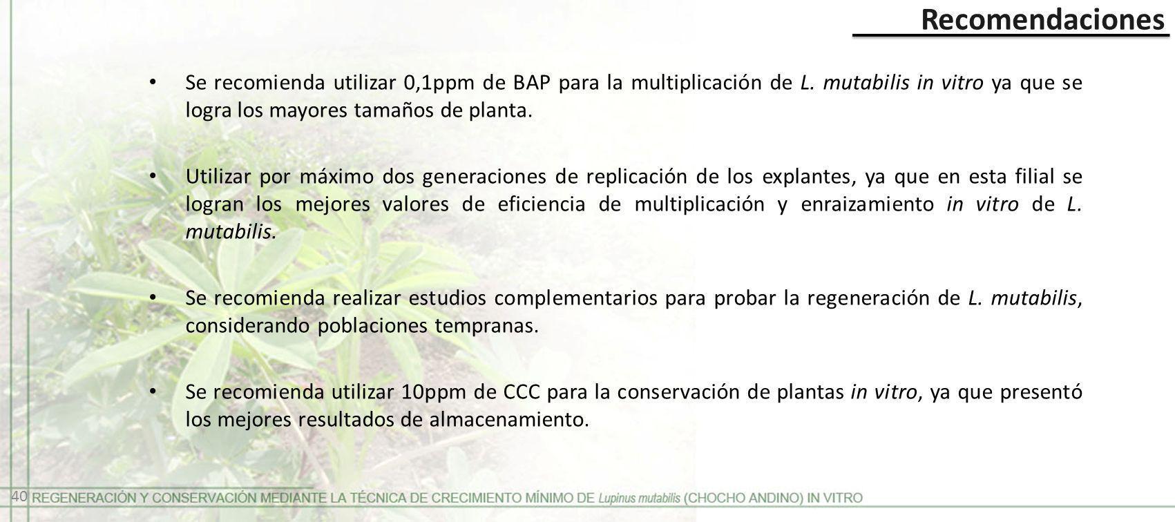 Recomendaciones Se recomienda utilizar 0,1ppm de BAP para la multiplicación de L. mutabilis in vitro ya que se logra los mayores tamaños de planta.