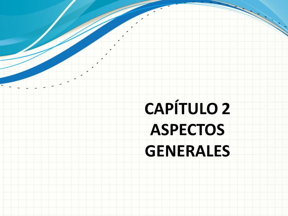 CAPÍTULO 2 ASPECTOS GENERALES