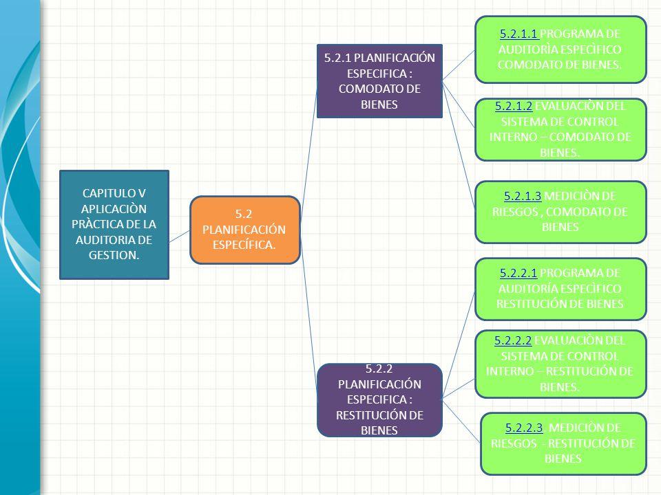 5.2.1.1 PROGRAMA DE AUDITORÌA ESPECÌFICO COMODATO DE BIENES.