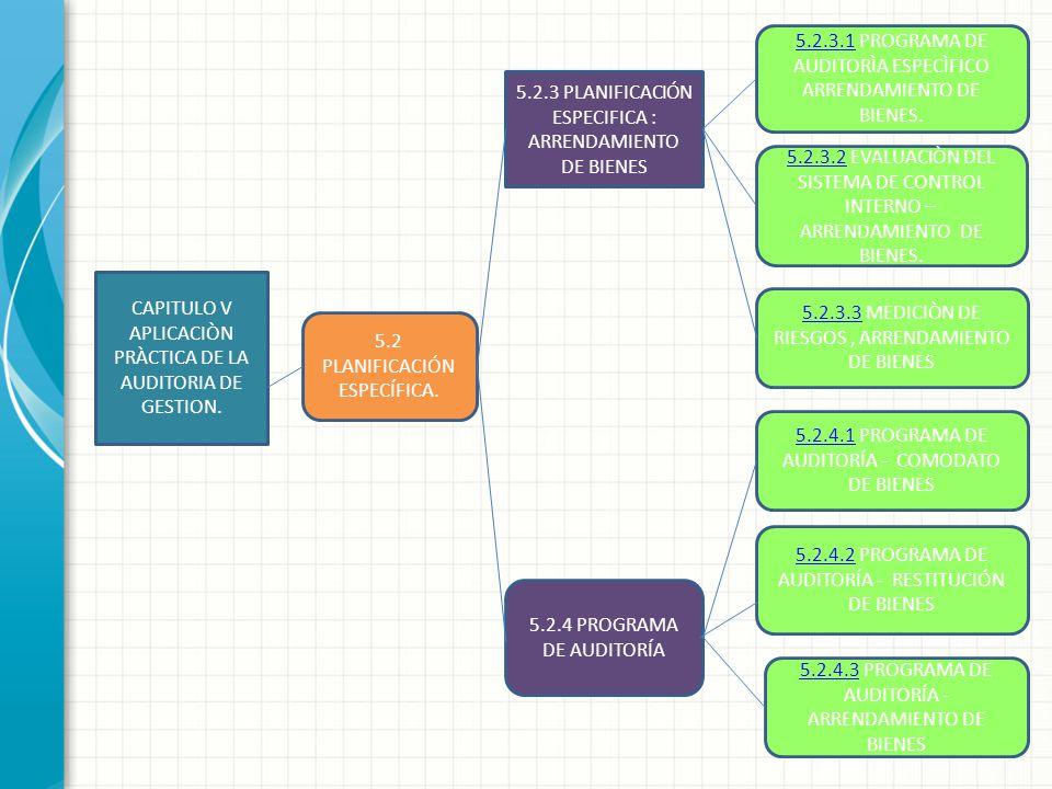 5.2.3.1 PROGRAMA DE AUDITORÌA ESPECÌFICO ARRENDAMIENTO DE BIENES.
