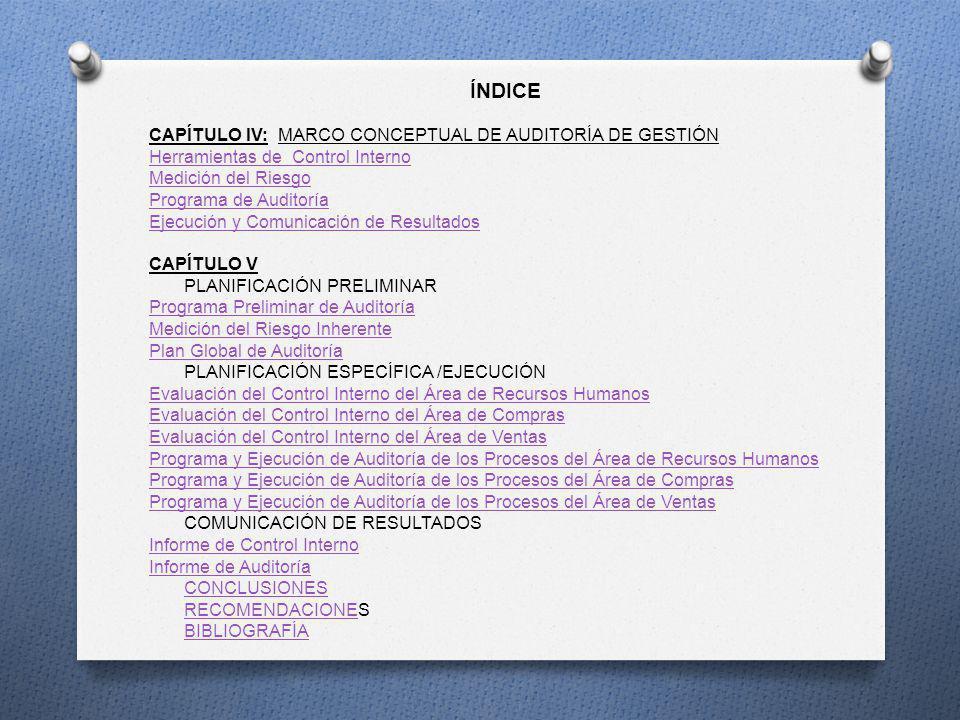 ÍNDICE CAPÍTULO IV: MARCO CONCEPTUAL DE AUDITORÍA DE GESTIÓN