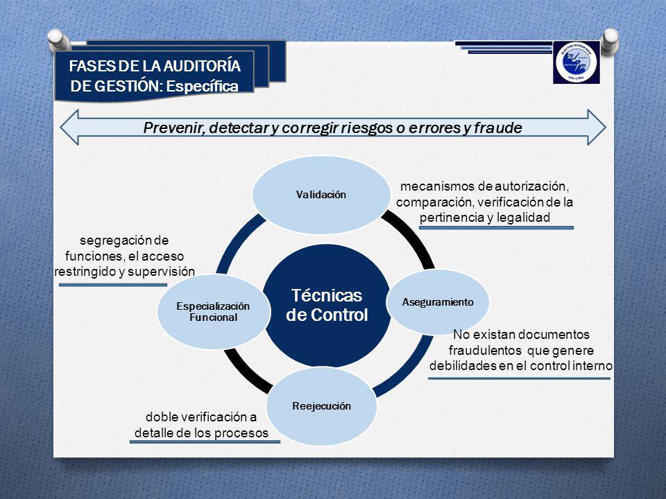 Técnicas de Control FASES DE LA AUDITORÍA DE GESTIÓN: Específica