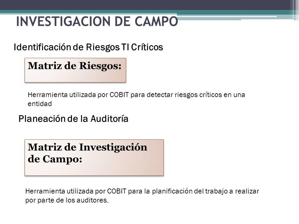 INVESTIGACION DE CAMPO