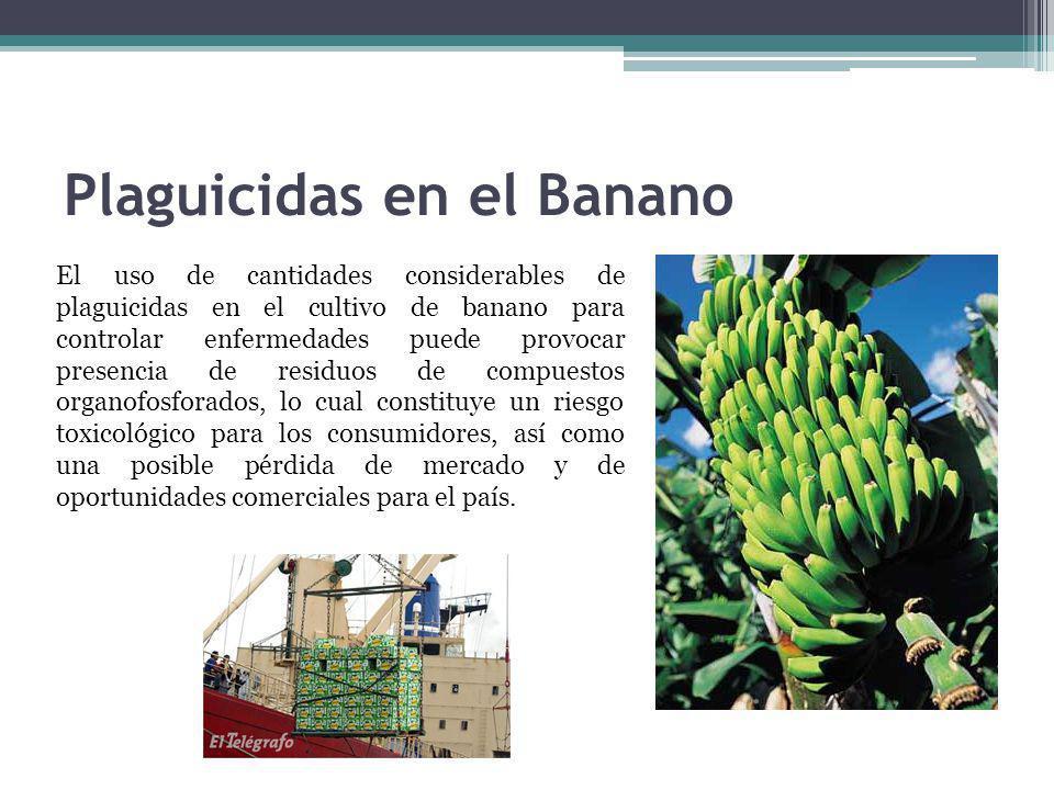 Plaguicidas en el Banano