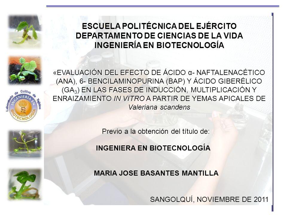 ESCUELA POLITÉCNICA DEL EJÉRCITO DEPARTAMENTO DE CIENCIAS DE LA VIDA