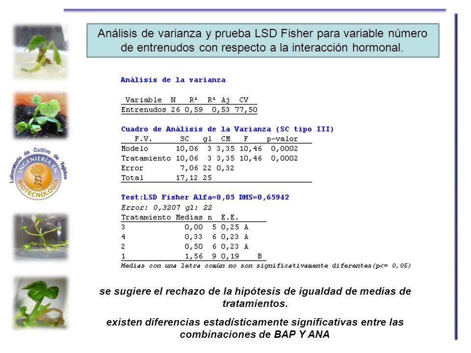 Análisis de varianza y prueba LSD Fisher para variable número de entrenudos con respecto a la interacción hormonal.