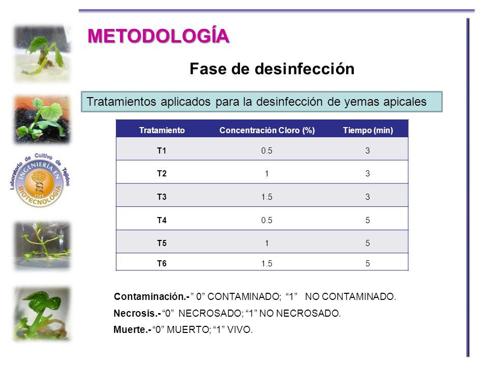 Concentración Cloro (%)