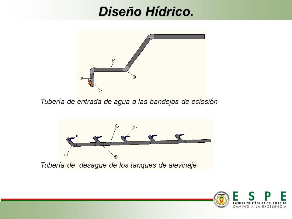 Diseño Hídrico. Tubería de entrada de agua a las bandejas de eclosión