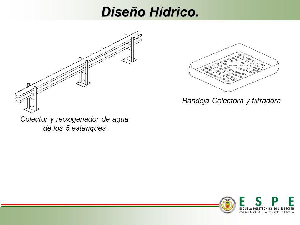 Colector y reoxigenador de agua de los 5 estanques