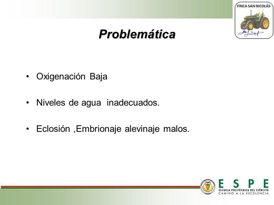 Problemática Oxigenación Baja Niveles de agua inadecuados.