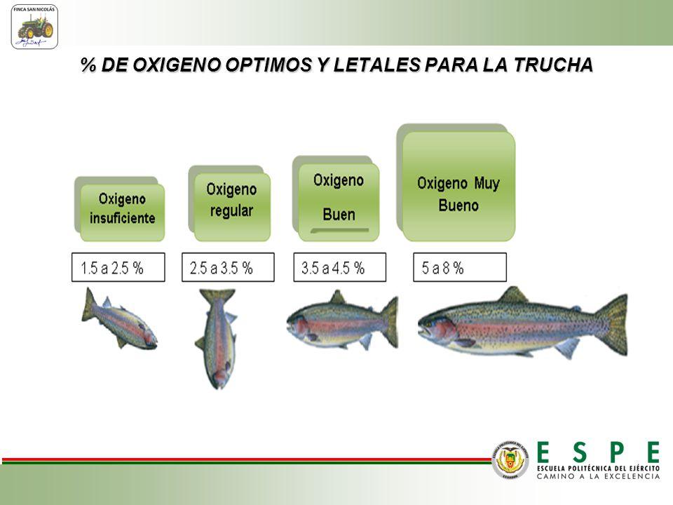 % DE OXIGENO OPTIMOS Y LETALES PARA LA TRUCHA