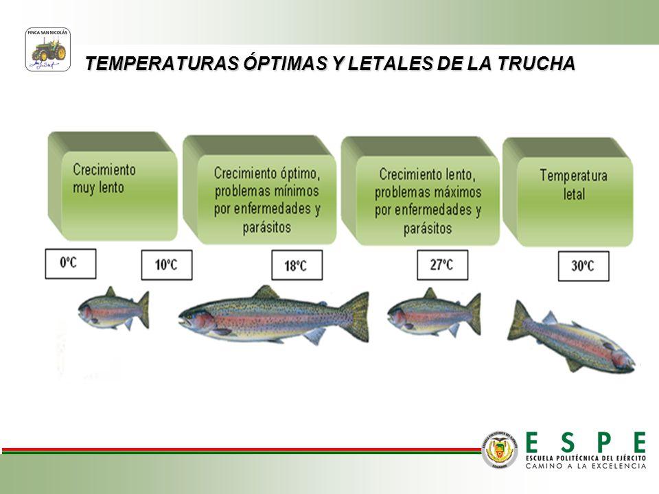 TEMPERATURAS ÓPTIMAS Y LETALES DE LA TRUCHA
