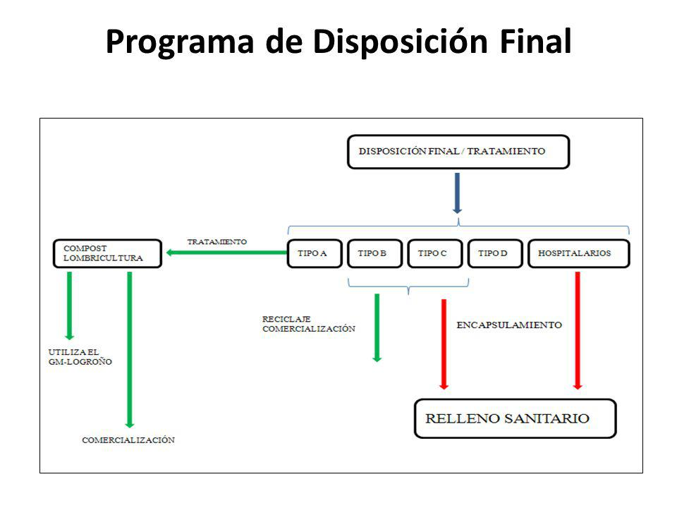 Programa de Disposición Final