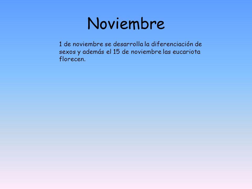 Noviembre 1 de noviembre se desarrolla la diferenciación de sexos y además el 15 de noviembre las eucariota florecen.