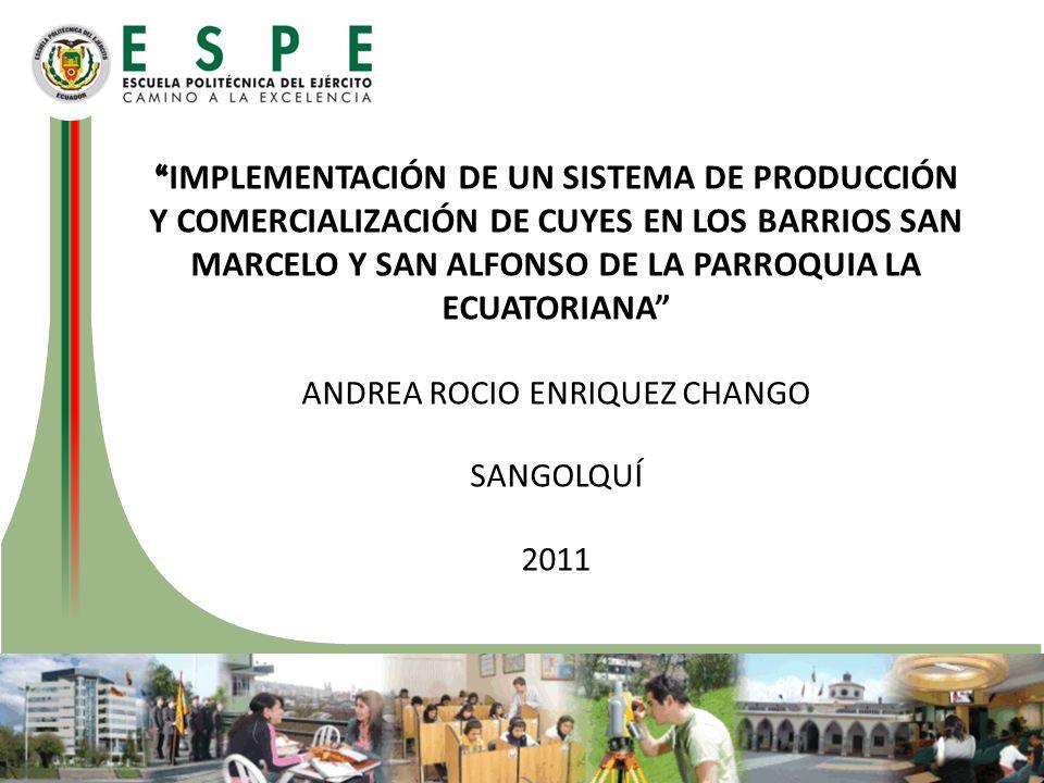 ANDREA ROCIO ENRIQUEZ CHANGO