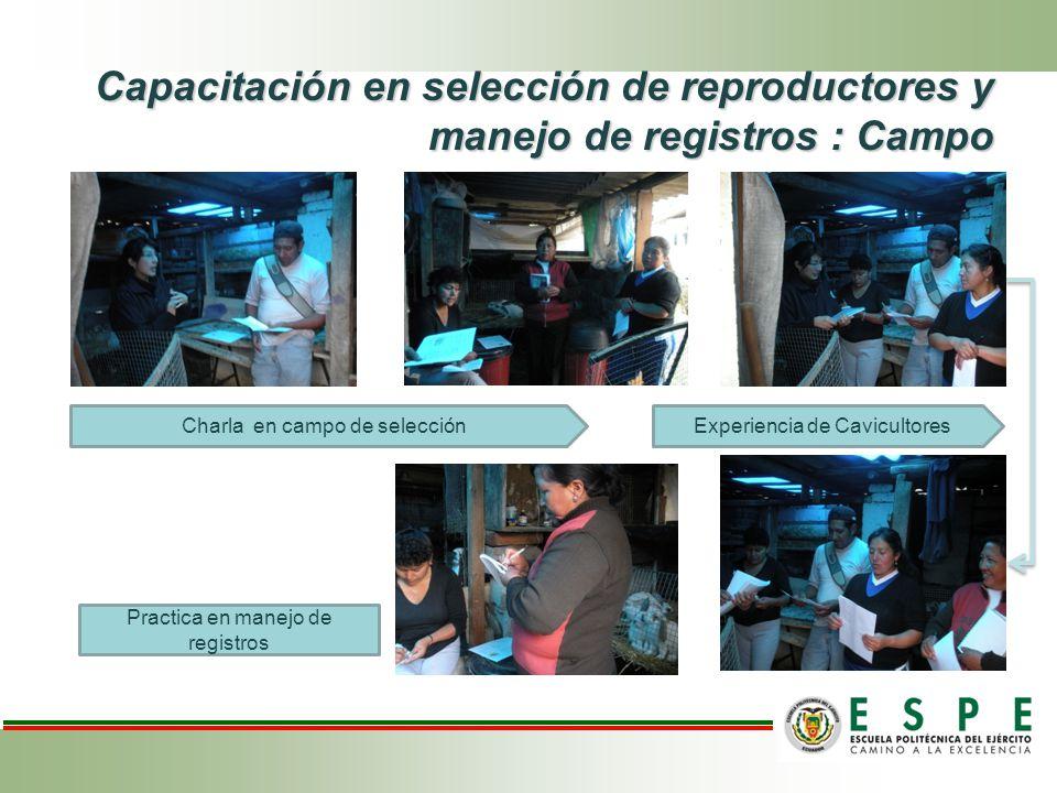 Capacitación en selección de reproductores y manejo de registros : Campo