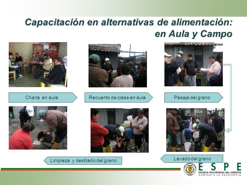 Capacitación en alternativas de alimentación: en Aula y Campo