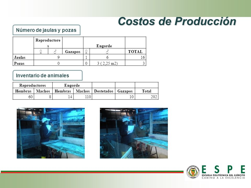 Costos de Producción Número de jaulas y pozas Inventario de animales
