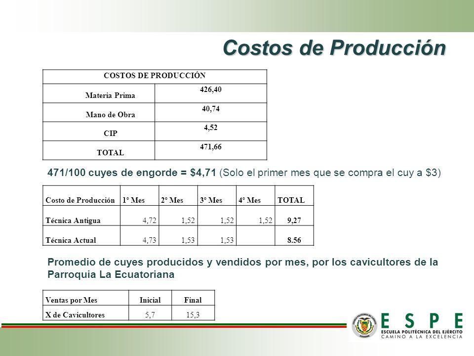 Costos de Producción COSTOS DE PRODUCCIÓN. Materia Prima. 426,40. Mano de Obra. 40,74. CIP. 4,52.