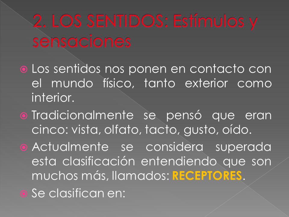 2. LOS SENTIDOS: Estímulos y sensaciones