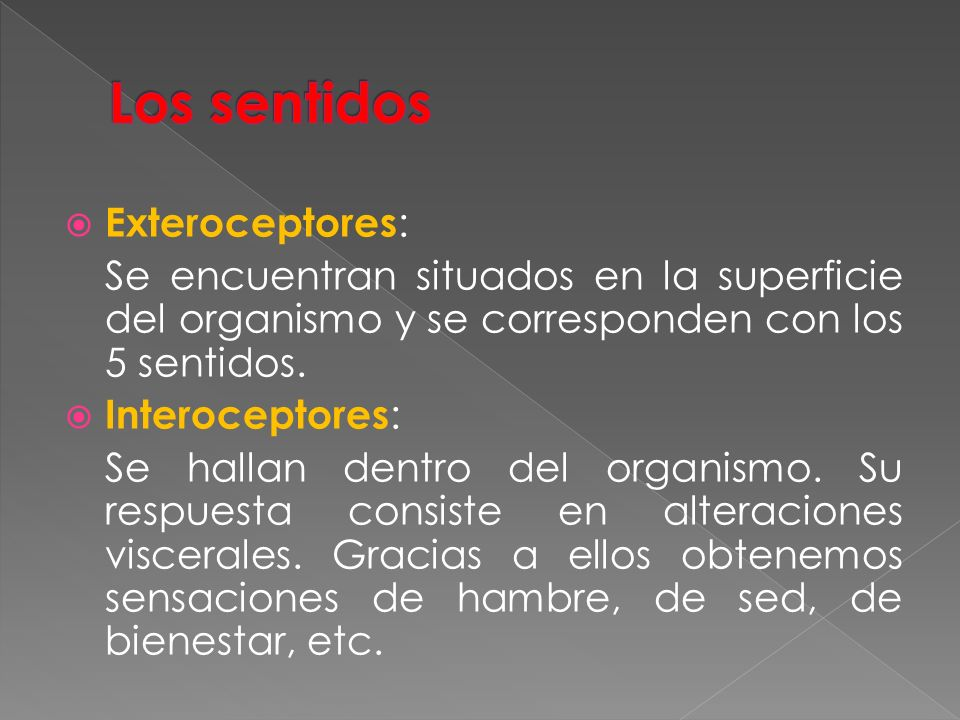 Los sentidos Exteroceptores: