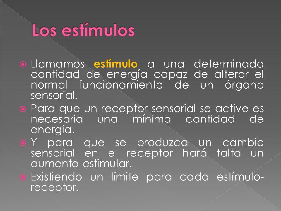 Los estímulos Llamamos estímulo a una determinada cantidad de energía capaz de alterar el normal funcionamiento de un órgano sensorial.