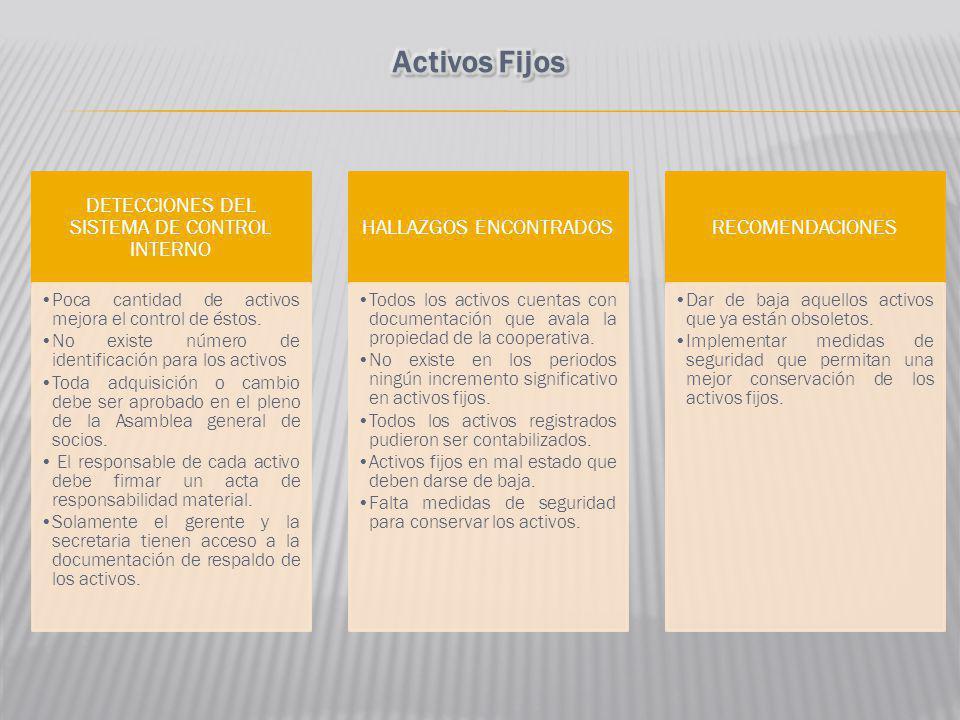 Activos Fijos DETECCIONES DEL SISTEMA DE CONTROL INTERNO