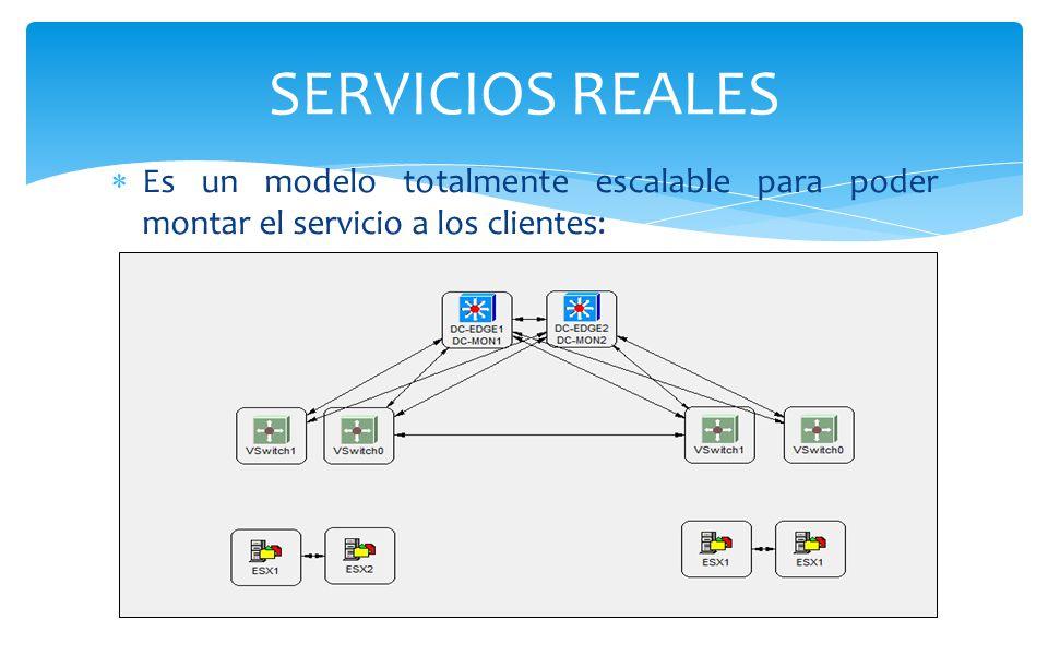 SERVICIOS REALES Es un modelo totalmente escalable para poder montar el servicio a los clientes: